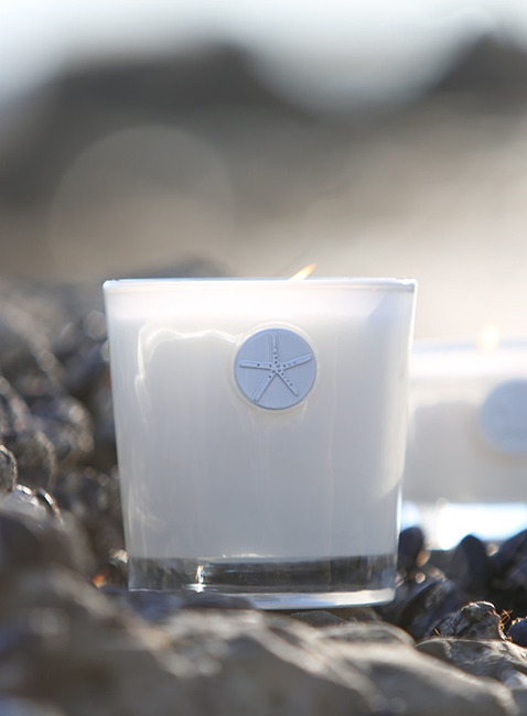 BAREFOOT DREAMS® LUXE SOY CANDLE