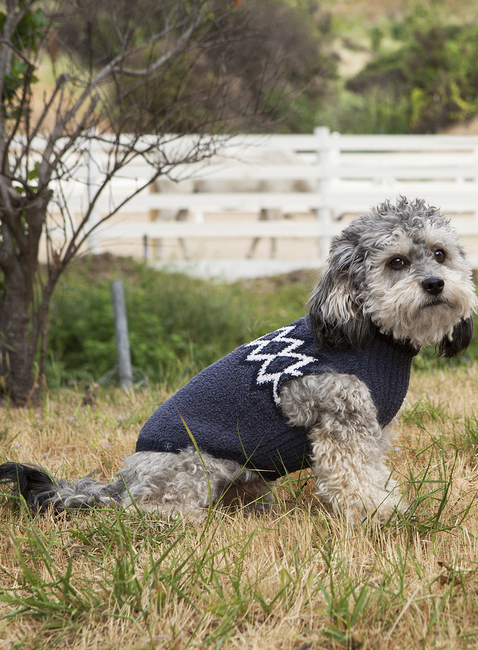 COZYCHIC™ NORDIC PET SWEATER