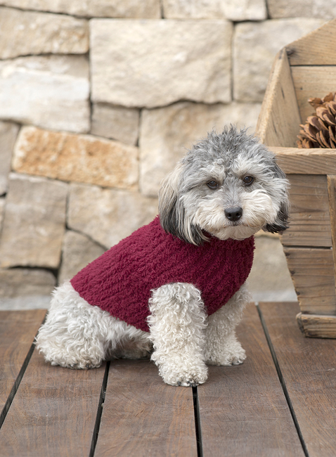 Barefoot Dreams Cozychic Ribbed Pet Sweater
